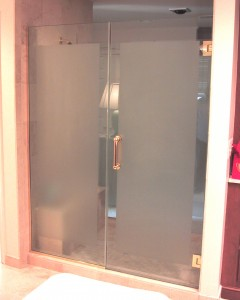 Shower Door 8